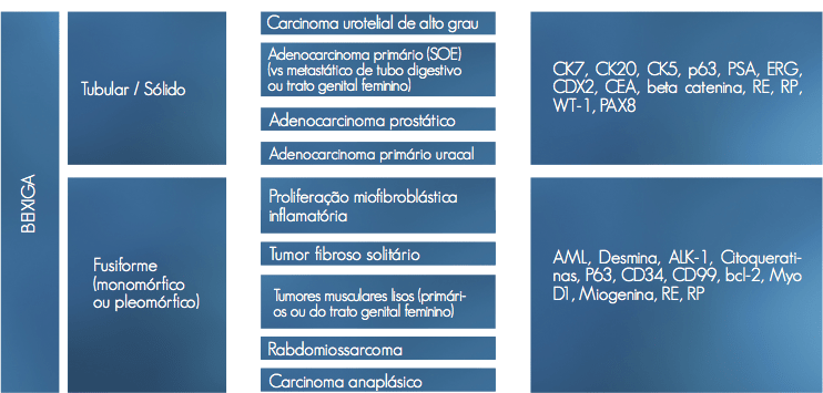 tumores do trato urinario 2